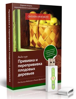 видеокурс Прививка и перепрививка плодовых деревьев скачать бесплатно торрент