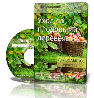 Видеокурс «Уход за плодовыми деревьями» скачать бесплатно торрент - Алина Рабушко и Николай Рабушко